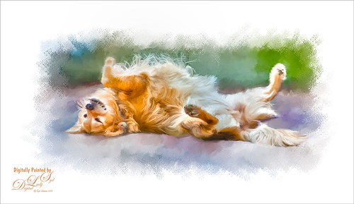 Painted image of a Golden Retriever in the Sun
