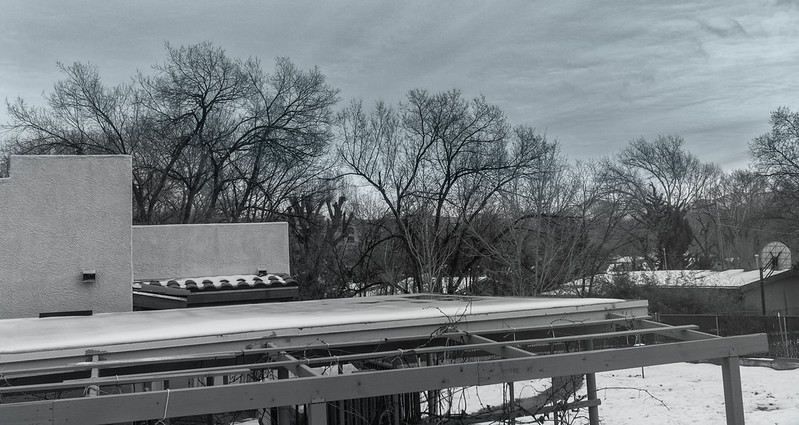 Gray Wintery Sky B&W in Prescott