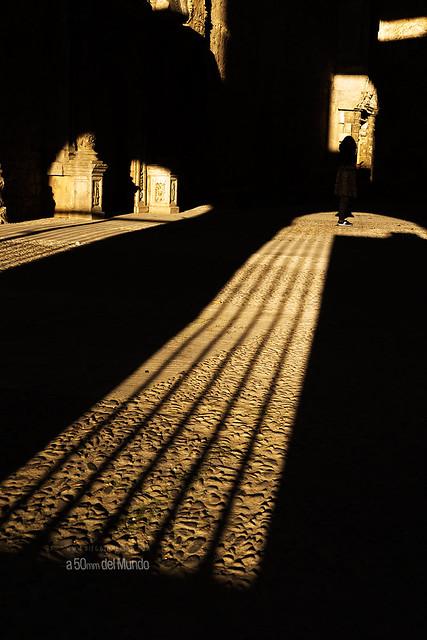 Atrapada por la luz