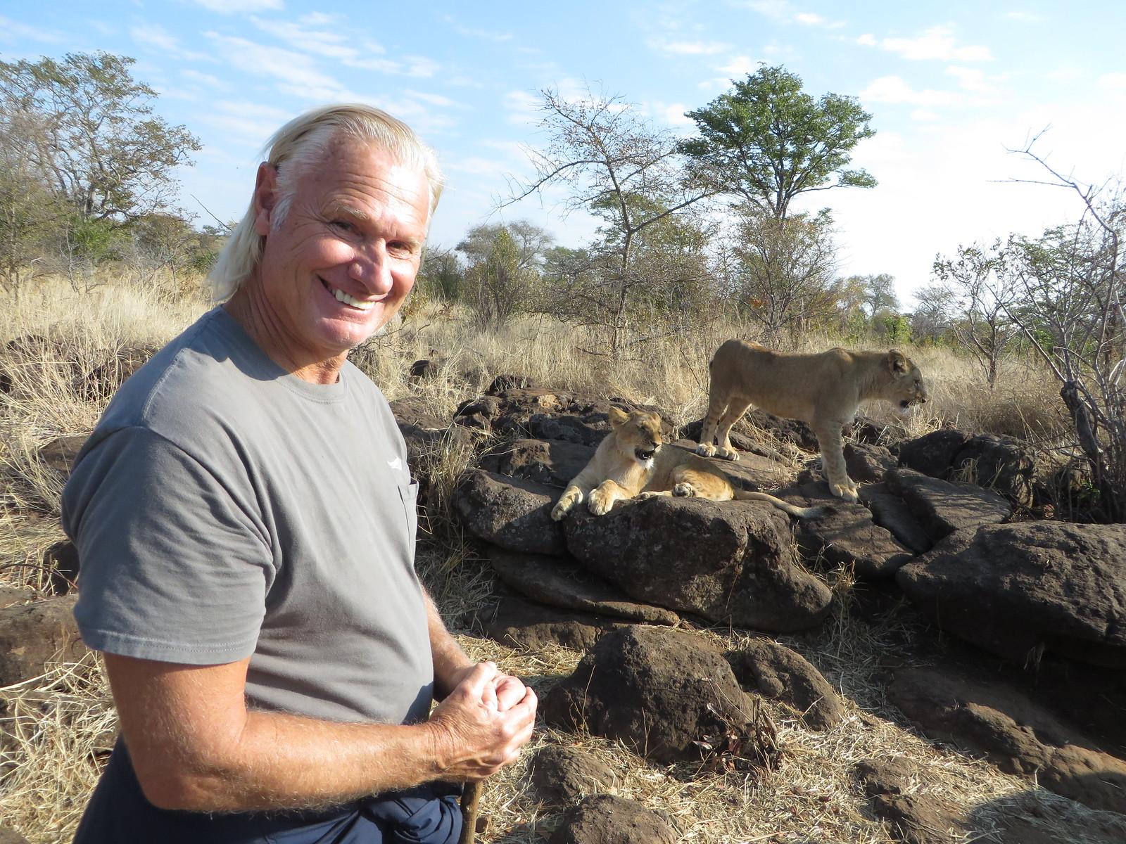 Rest break for the lion cubs. Bill observes.