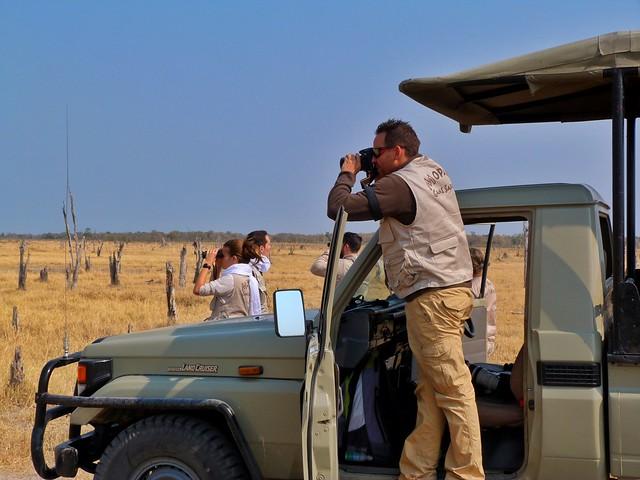 Escena cotidiana en el safari que hicimos en Botswana con Mopane Game Safaris