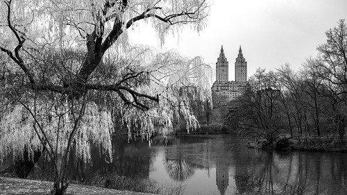 New York - Central Park | by riese.laurenc