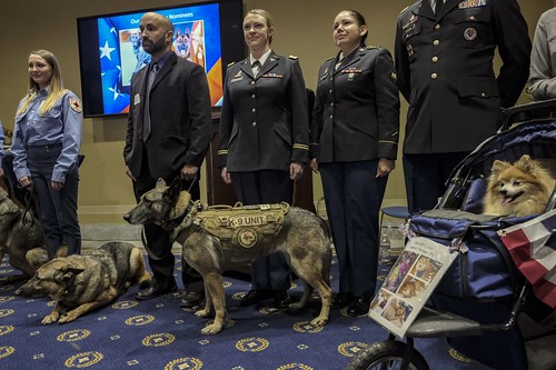 Animals Medal of Bravery ceremony
