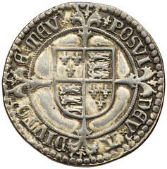Henry VII silver testoon reverse