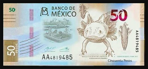 unofficial replica of the new Mexico 50-peso banknote
