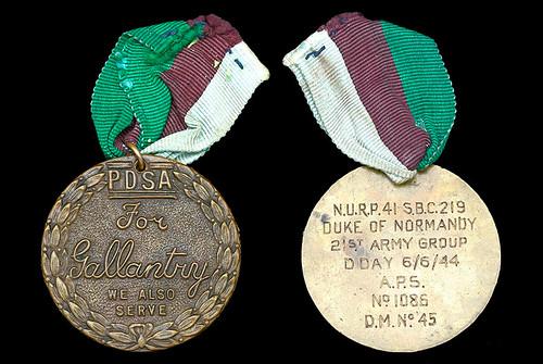 Dickin Medal Duke of Normandy pigeon