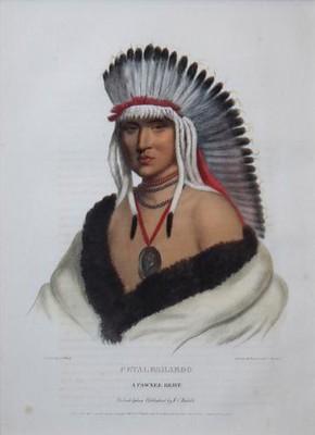 Pawnee Brave Petalesharoo