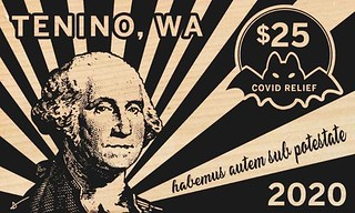 Tenino 2020 $25 wooden scrip