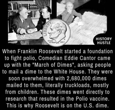 FDR March of Dimes Facts