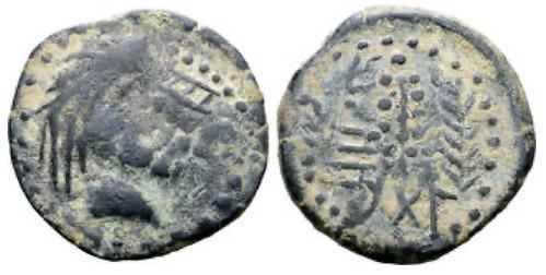 mauretania coin of Camarata