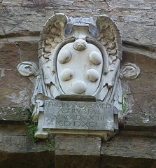 Medici-family-coat-of-arms