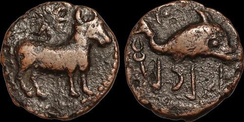 Iberia Asido 2nd Century B.C. Semis