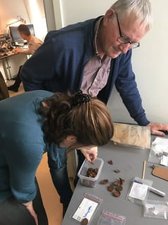 Examining Safe Crossing Roman Coin Find