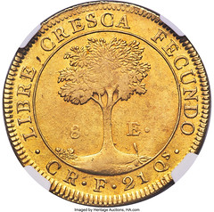 Central American Republic gold 8 Escudos 1828 CR-F AU58+ NGC_Heritage_Auctions_2