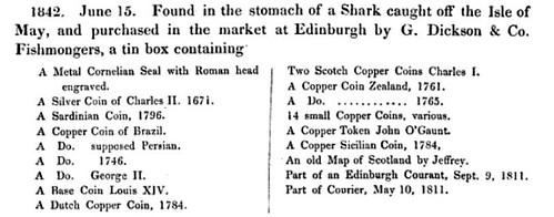 sharkstomach1842