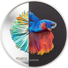 Eclectic Nature - Fighting Fish reverse
