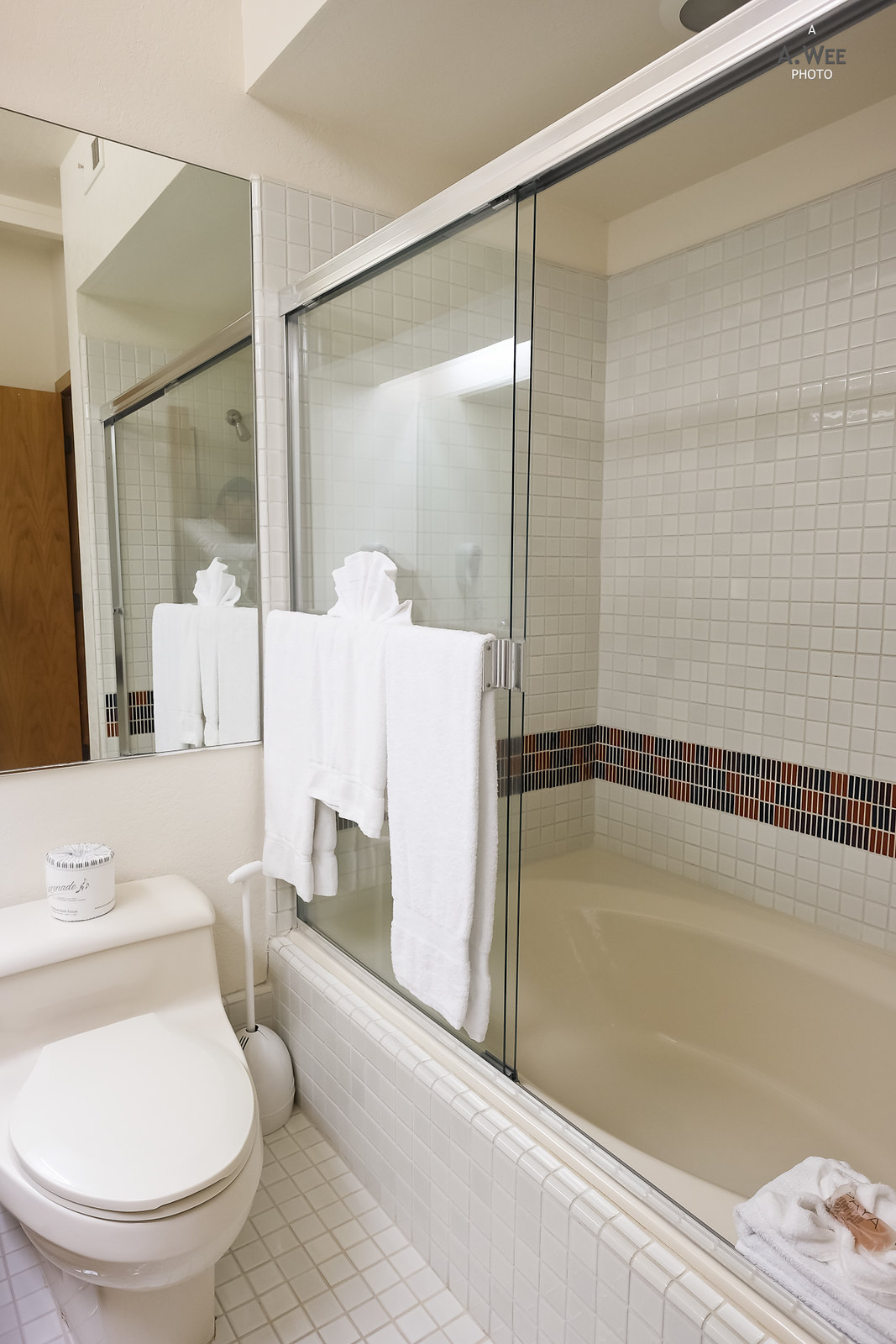 Shower in the bathtub