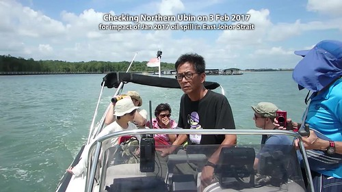 Checking Northern Ubin, 3 Feb 2017