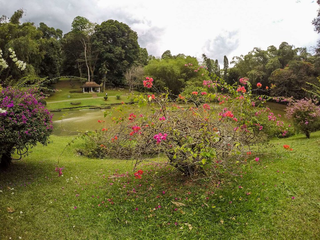 Two awesome weeks: Best places to visit in Sri Lanka