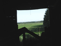 looking through - abandoned farm series | by withrow