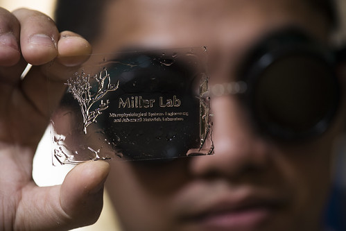 Andy Hydrogel Stereolithography 2013 AMRI | by jmil