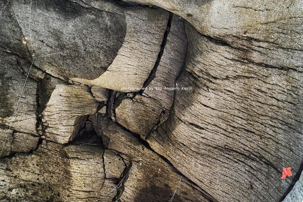 Permukaan batu andesit di Curug Badak yang menyerupai kulit Badak.