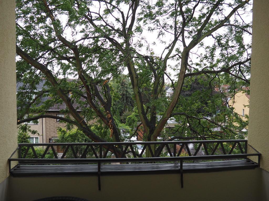 Balkonaussicht Herbst