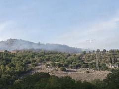incendio contrada foresta polla 05