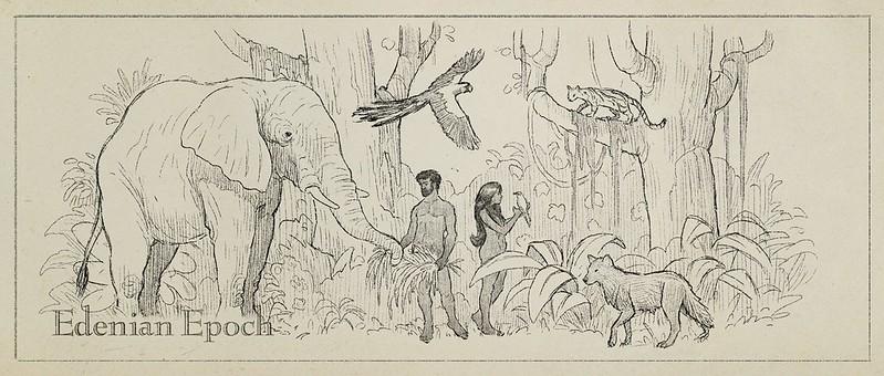 Illustrations - Is Genesis History?