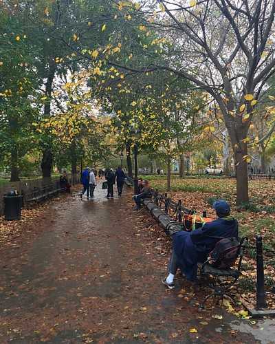 #fallcolors #autumncolors at @washingtonsquarepark_  #washingtonsquarepark #newyork #nyc | by Jahane Rumi