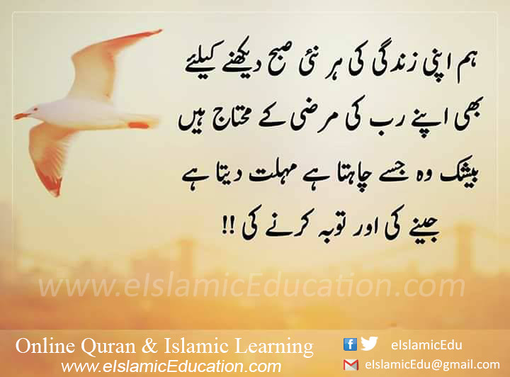 chat online islam