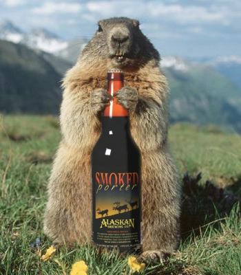alaskan-marmot