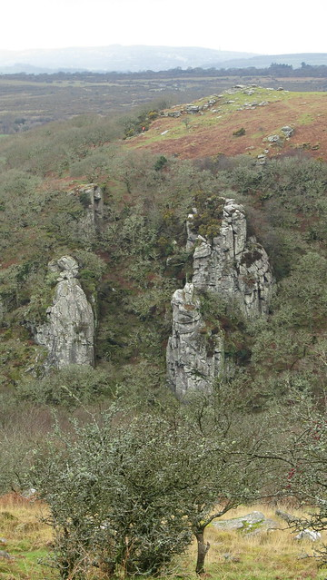 The Dewerstone from West Down