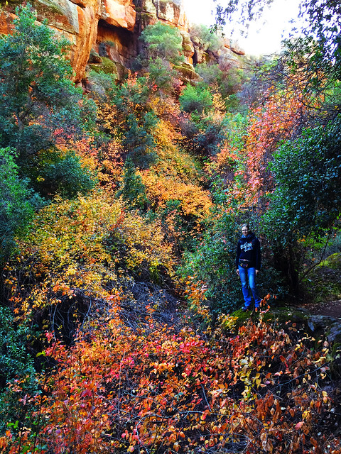 Best Autumn Hikes In California: Pinnaces National Park, California, USA