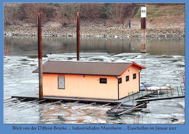 Wetter Mannheim, Januar 2017 ... Eisgang auf dem Altrhein ... Eisschollen ... Friesenheimer Insel und Industriehafen ... Fotos und Collagen: Brigitte Stolle, Mannheim