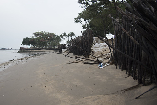 Changi Point beach after oil spill in Johor Strait, Jan 2017