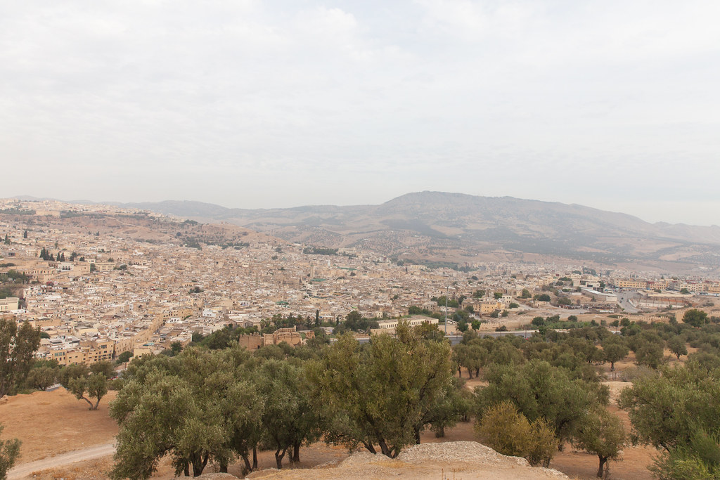 Fez from the Southern Tower