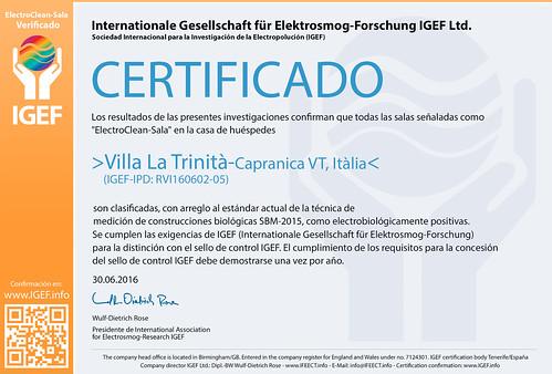 IGEF-Zertifikat-RVI-SP