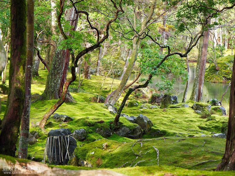 京都 苔寺(西芳寺)