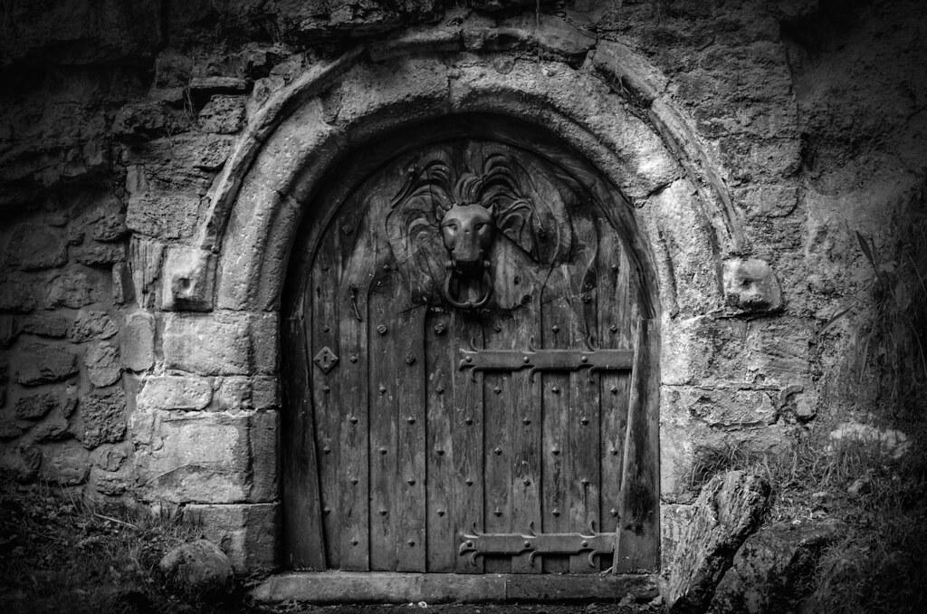 Exceptionnel ... The Lion Door, Mowbray Park, Sunderland | By DM Allan