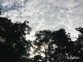 CIRCLEG 遊記 香港 屯門 菠蘿山 良景邨 日落  (11)