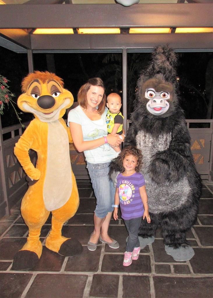 Walt Disney World New Years Eve