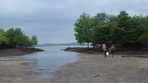 Fishermen who came to harvest prawns at Pulau Semakau (South)