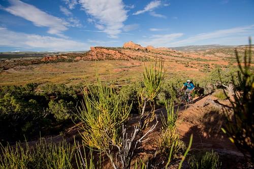 BLM Mountain Biking: Red Fleet Trail Complex, McCoy Flats Trails in Utah