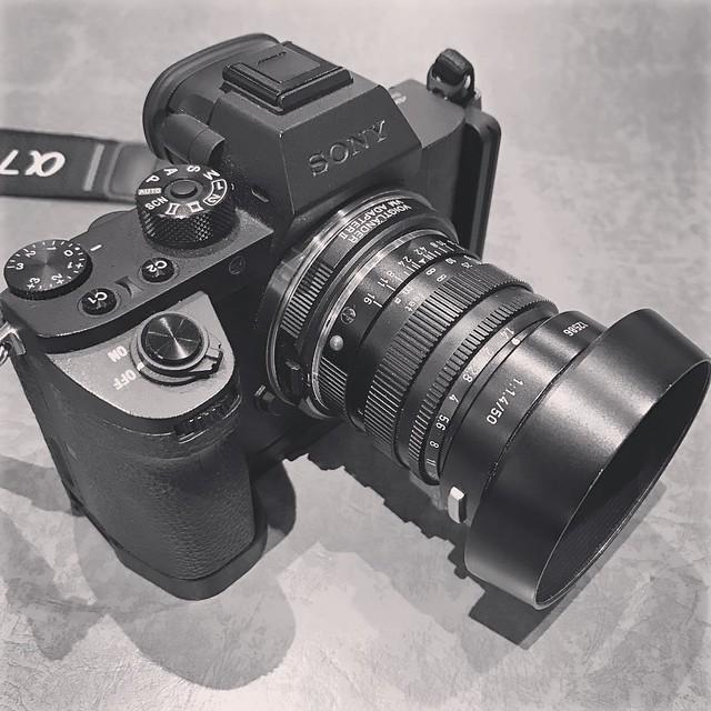 Leica M 50mm f1.4 菠蘿山試鏡