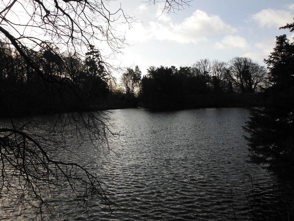 Clapham Nature Trail 4