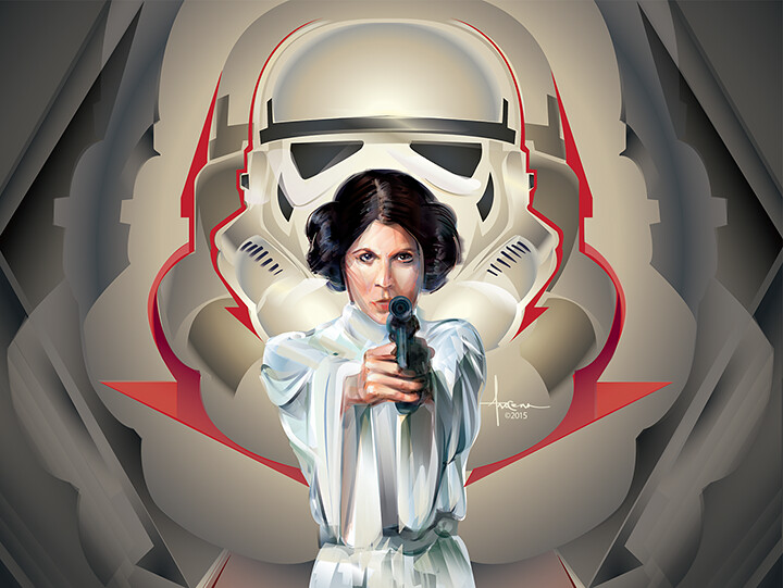 Star Wars: Adversaries By Orlando Arocena - Stormtrooper vs Princess Leia