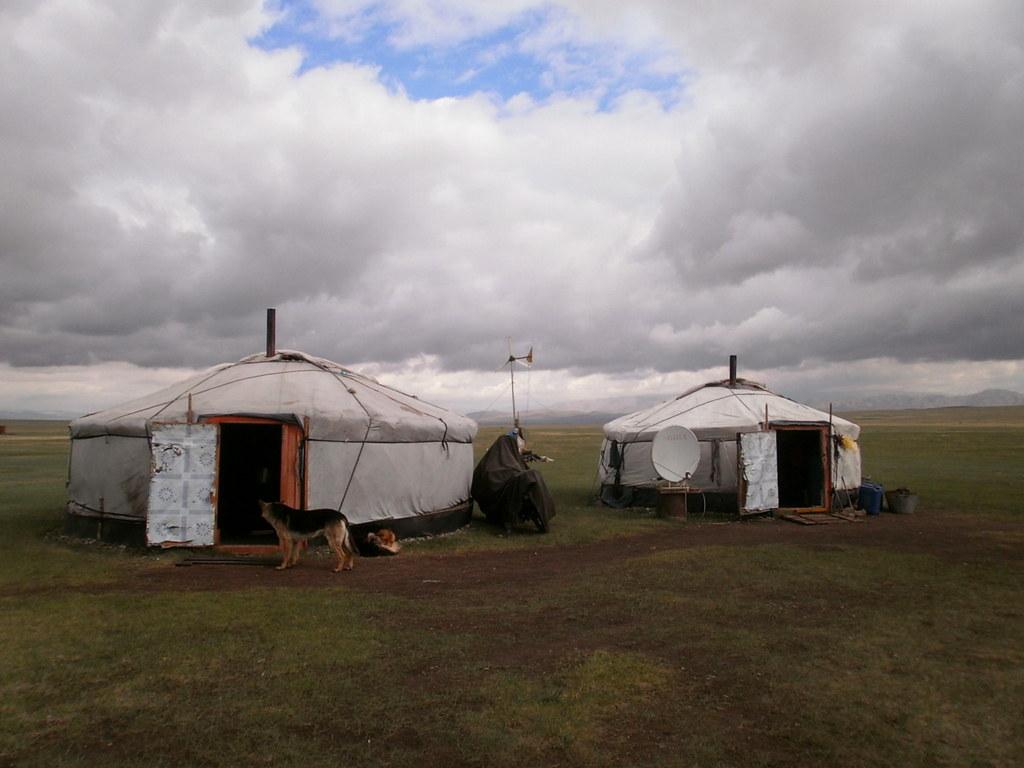 Mongolia vinkit | jurtta