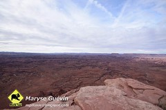 Canyonlands The   Needles USA