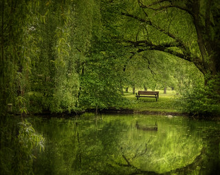 Another green world | by IrenaS